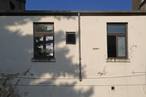 rheinweg48-holzfenster-122-web
