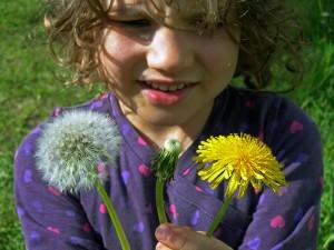 Die Gärten sind auch ein Paradies und eine Schule für Kinder. Aber was zählen die schon gegen Billigangebote ..